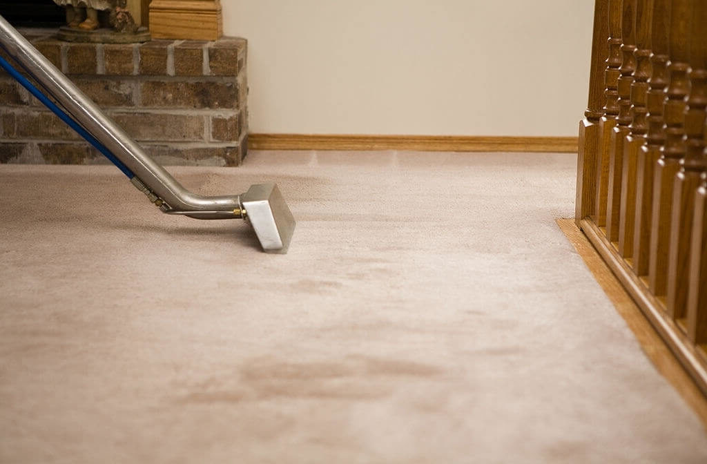 Deep Steam Carpet Cleaning Homestead