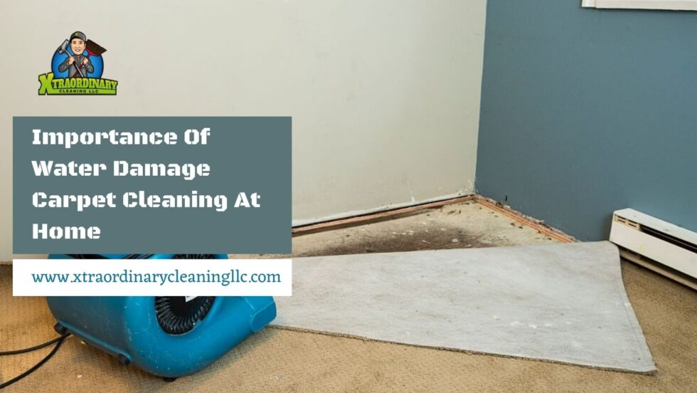 Importance Of Water Damage Carpet Cleaning At Home