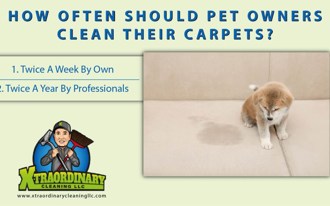How Often Should Pet Owners Clean Their Carpets