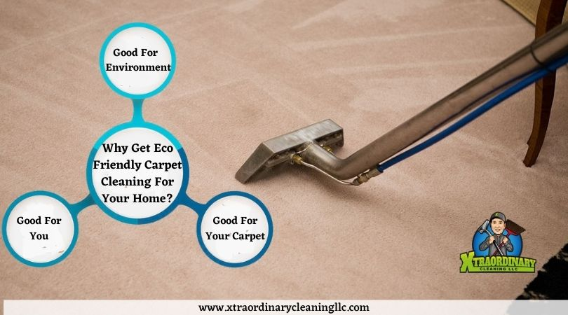Eco Friendly Carpet Cleaning Services Lakeland