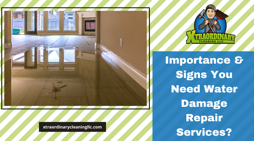 Importance & Signs You Need Water Damage Repair Services?