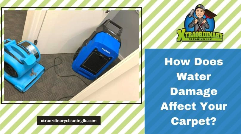 How Does Water Damage Affect Your Carpet?