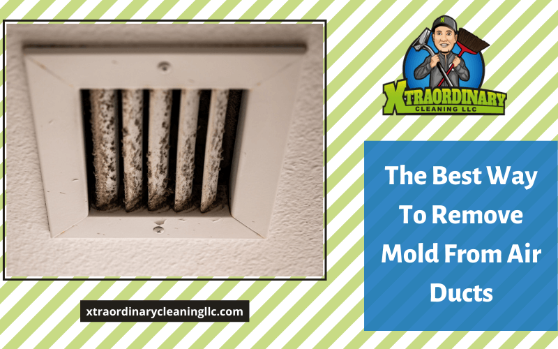 The Best Way To Remove Mold From Air Ducts