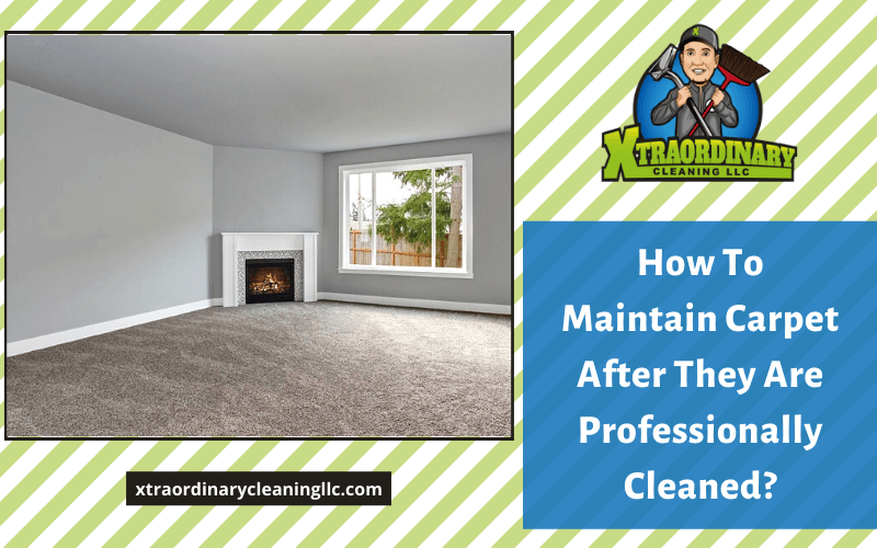 How To Maintain Carpet After They Are Professionally Cleaned?
